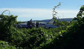 Na Bahia, avião com doses da vacina da Covid-19 bate em jumento que estava em pista de aeródromo