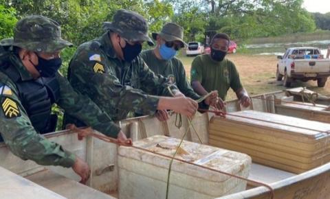 No sul do estado, pescadores recebem multa de R$ 3 mil após fiscais encontrarem 80 quilos de peixes em barco