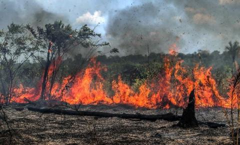 Tocantins ocupa o 2º lugar no ranking nacional de focos de queimada registrados desde janeiro