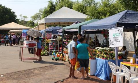 Prefeitura de Araguaína divulga prazo para cadastramento de vendedores no Dia de Finados